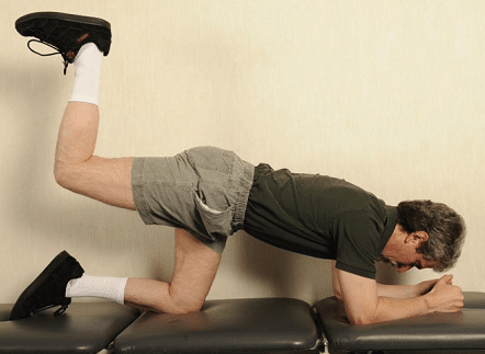 Quadruped_hip_extension_with_knee_ben