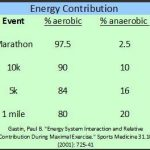 The Importance of Aerobic Running